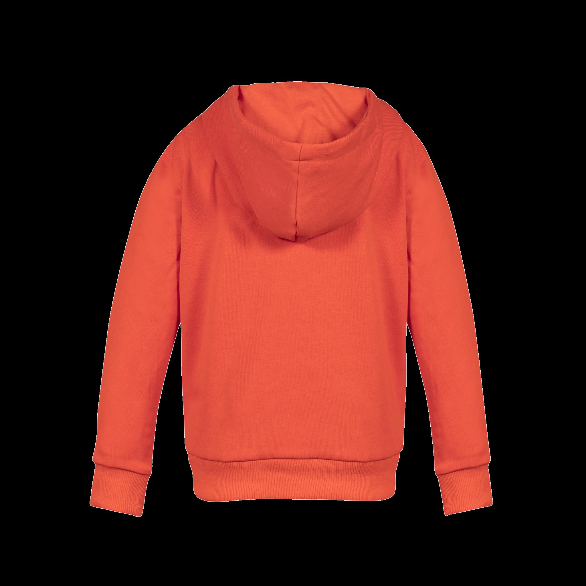 DDD hoodie Redio
