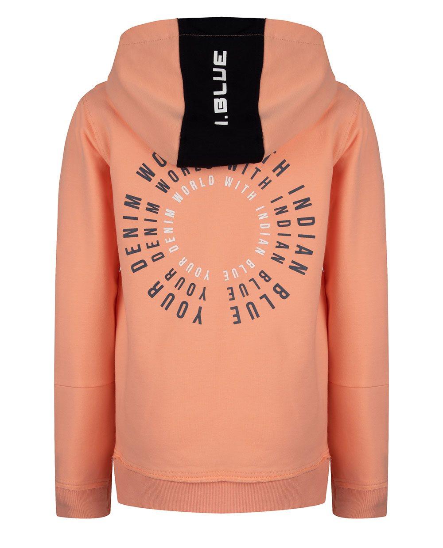 IBJ hoodie