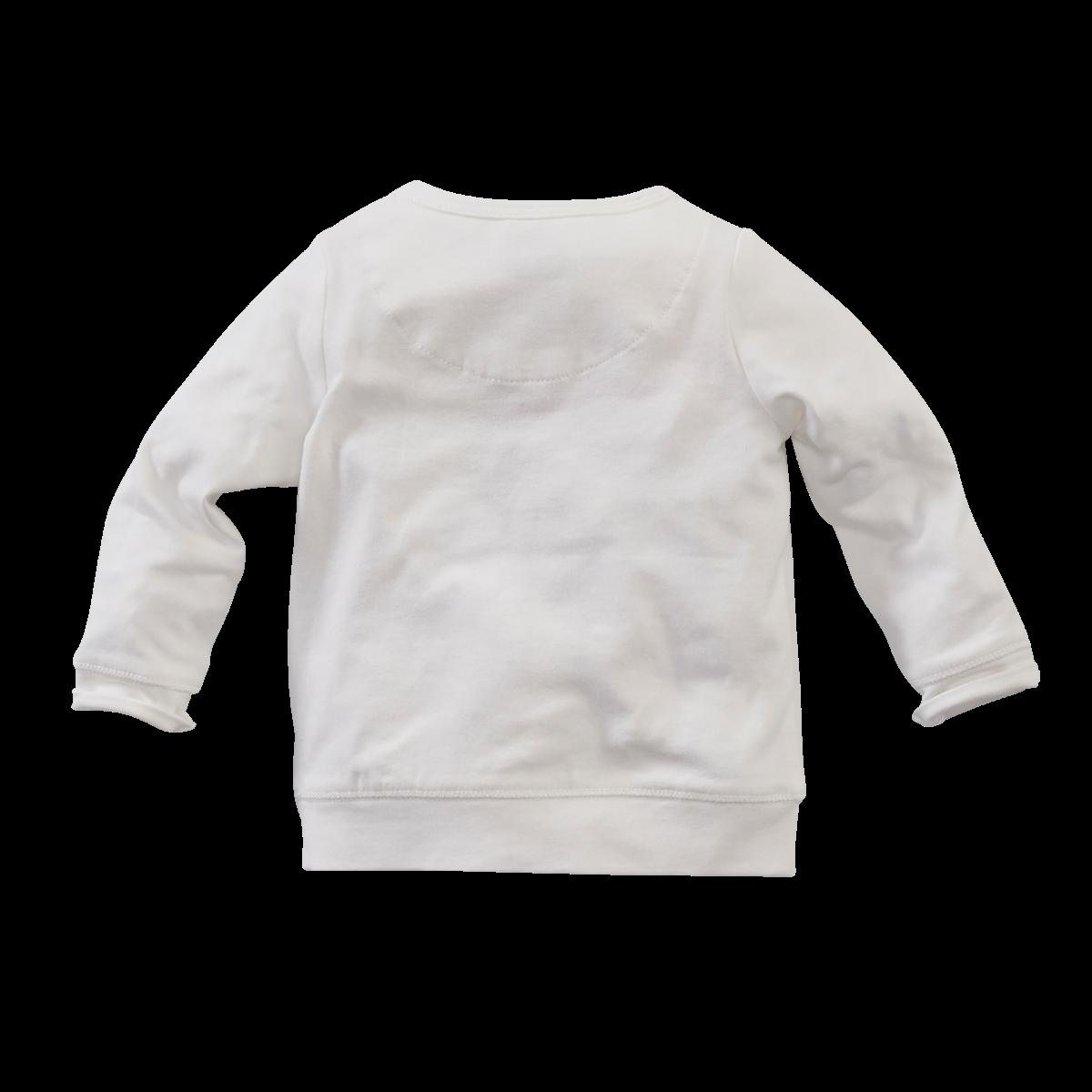 Z8 shirtje Oriole