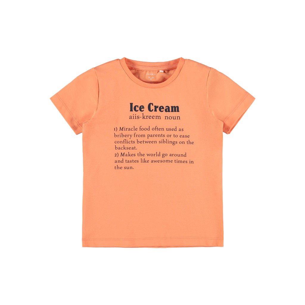 Name It t-shirt Halex